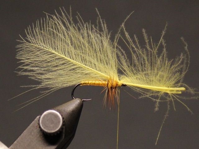CDC Floating Emerger